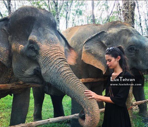 پارک گردشگری پوکت تایلند
