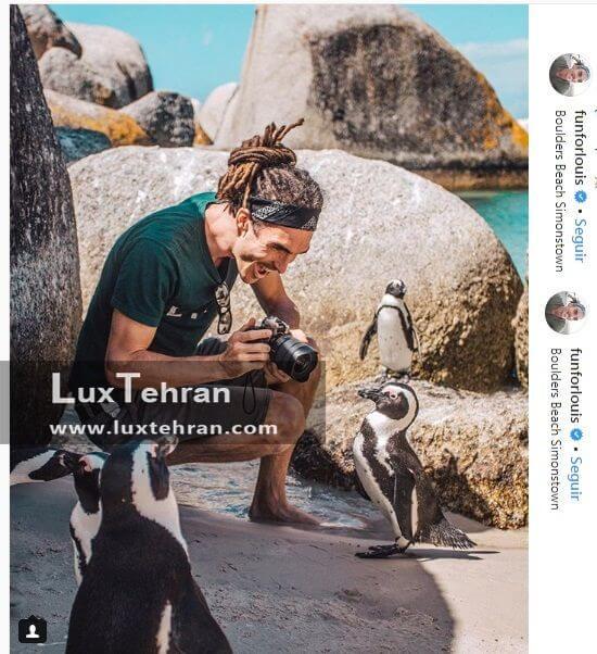 دیدار جذاب لوییس توریسم بلاگر معروف با پنگوئن های کنجکاو