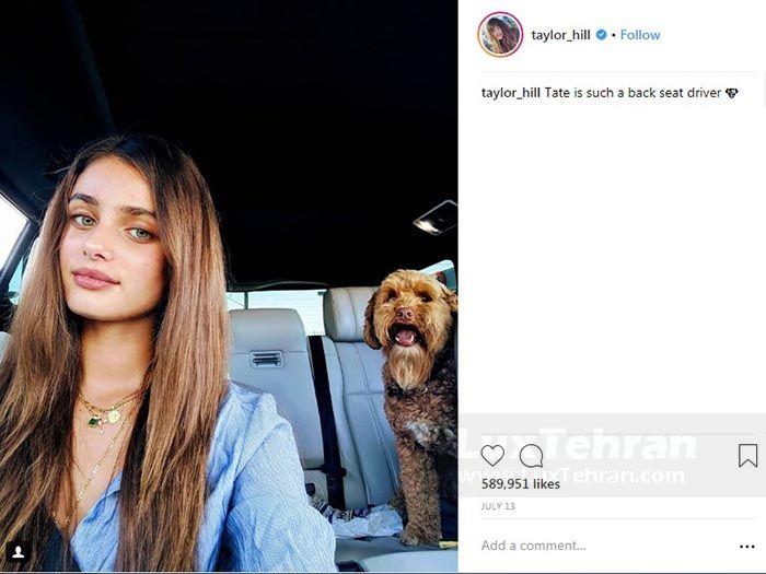 سلفی تیلور هیل  داخل  خودرو با سگش به نام TATE